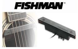 FISHMANのピックアップ
